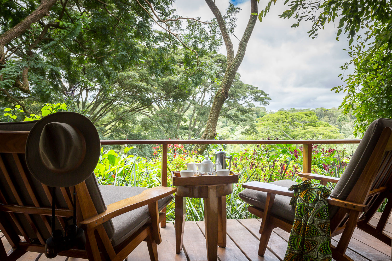 Coffee plantation accommodation in Tanzania