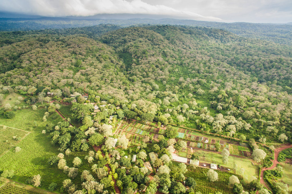 Gibb's Farm - Tanzania coffee plantation accommodation