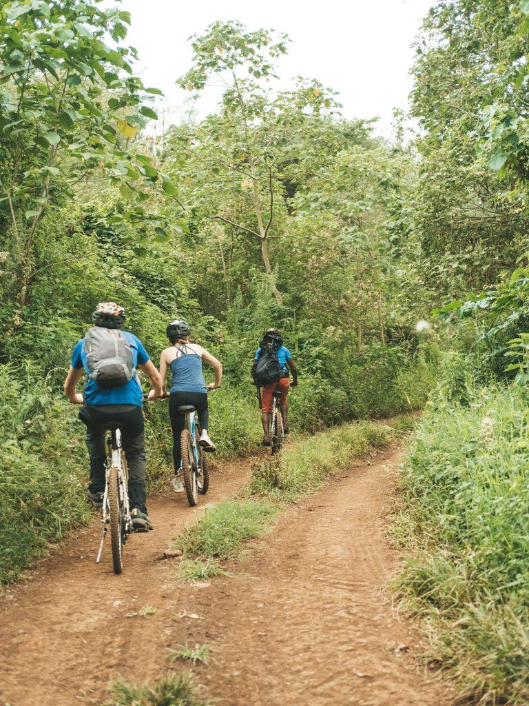 Gibb's Farm - Slow Safari bike trails