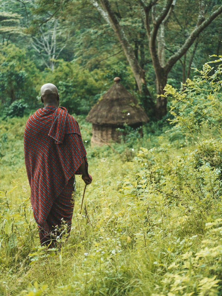 Gibb's Farm - Slow Safari medicinal walks