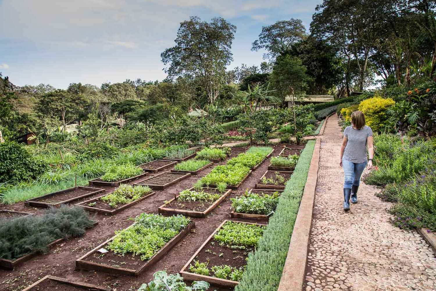Our farm is a model for sustainable and respectful practices