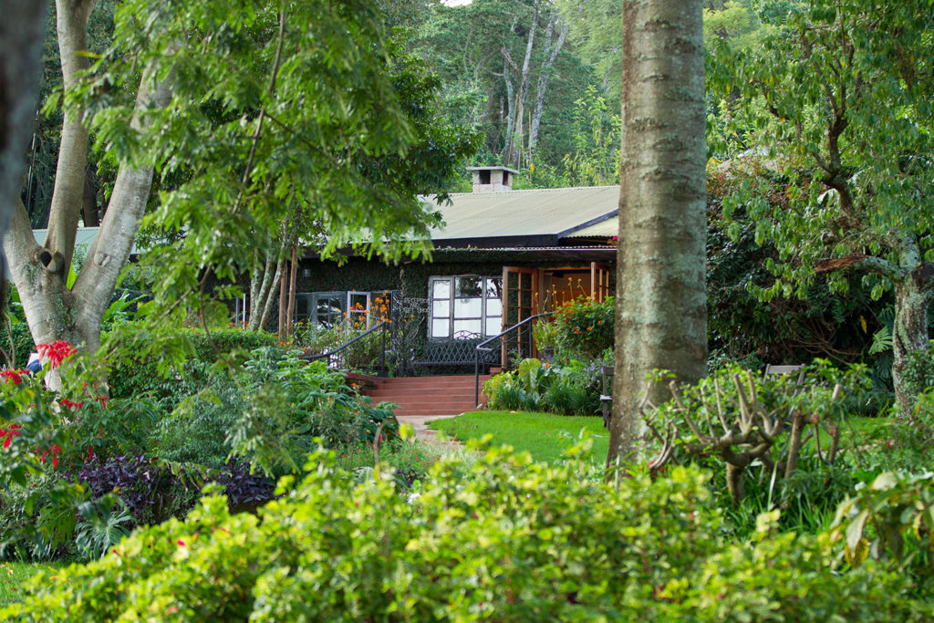 Gibb's Farm safari lodge in Tanzania